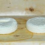 Formaggi a coagulazione lattica