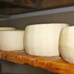 Formaggio duro di latte di pecora, capra e vacca