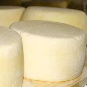 Il cacioricotta, formaggio dai mille perché