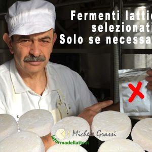 ALLARME QUALITA' DEL FORMAGGIO; l'abuso di fermenti lattici selezionati