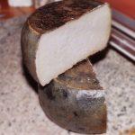 Al via il 1° Concorso internazionale dei formaggi ovini