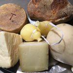 Sulle tracce dei pastori, i formaggi molisani
