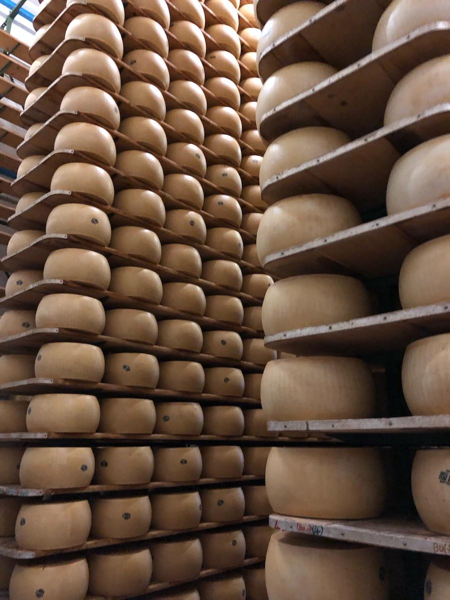 Le previsioni del… Parmigiano Reggiano!