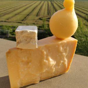 Le forme del formaggio